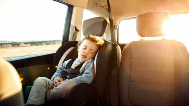 Sabe como deve transportar crianças no automóvel? PSP clarifica