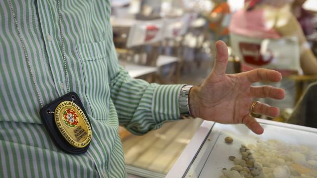 ASAE fecha 13 estabelecimentos ilegais em Lisboa