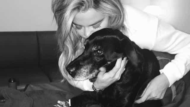 Grávida, Khloé Kardashian chora perda de 'cãopanheira'