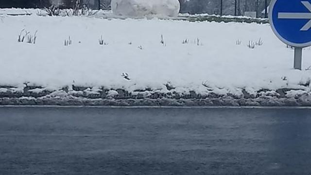 Escultura de neve gigante faz furor em universidade francesa