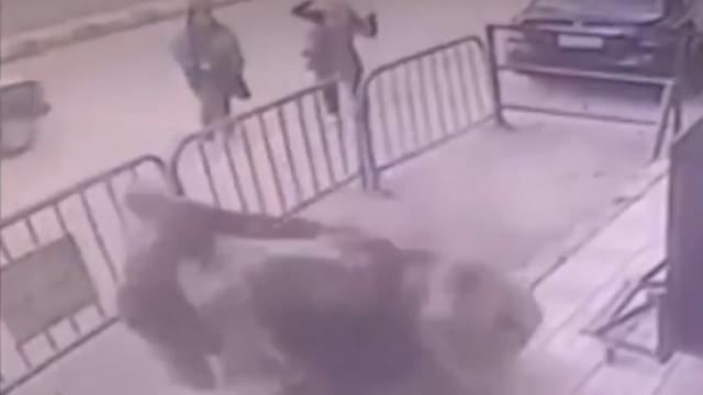 Polícia salva a vida de criança que caiu de um terceiro andar