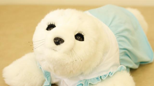 Robot de foca bebé que ajuda doentes com demência chega a Portugal