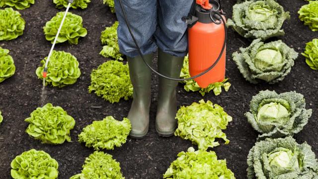 França proíbe pesticidas à base de metam-sódio pelos riscos