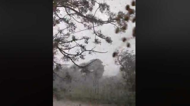 Eis mais imagens da intensidade do tornado que abalou o Algarve