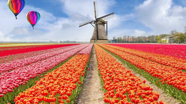 Os melhores locais para visitar durante a primavera