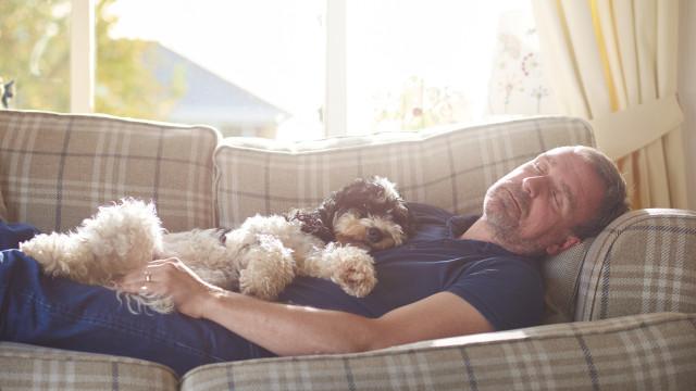 Vontade de dormir uma sesta pode ser sinal de Alzheimer