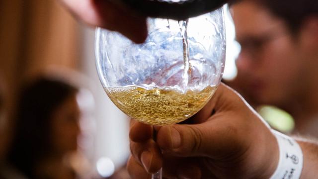 Enóphilo Wine Fest Lisboa: Deixe-se surpreender pelos vinhos portugueses