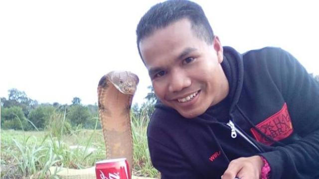 Apaixonado por cobras morre depois de ser mordido... por uma