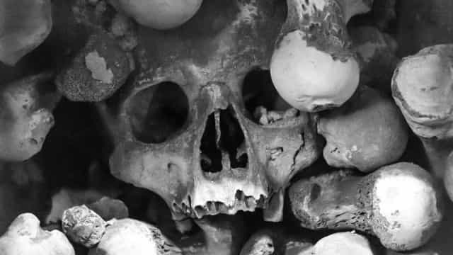 Assustador: A história por trás do canibalismo