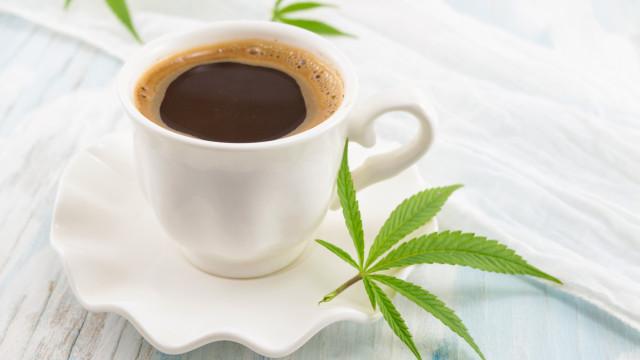 O café é como a cannabis… mas ao contrário