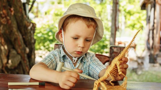 Leve os miúdos a ser arqueólogos por um dia