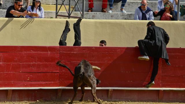 Estudantes da Universidade de Évora dizem 'não' a garraiada