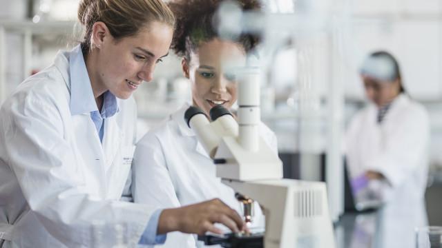 Mulheres portuguesas são as que mais se formam em tecnologias e ciências