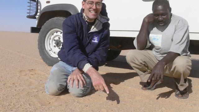 Diamantes provenientes de meteorito pode revelar origem o Sistema Solar