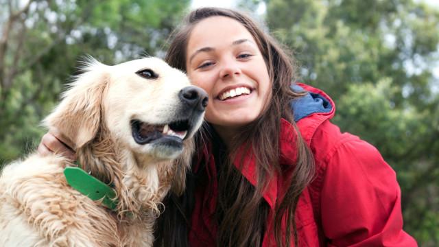 Cães e humanos são bastante próximos graças ao ADN semelhante
