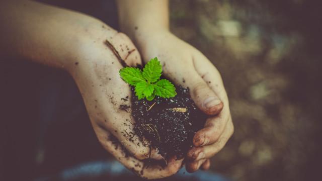 O Dia Mundial da Terra celebra-se em Monsanto