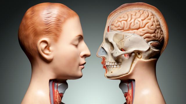 Mais de metade do corpo humano não é de facto humano… diz a ciência