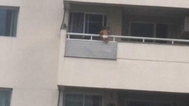 Vídeo mostra bebé de um ano pendurado numa varanda no Brasil