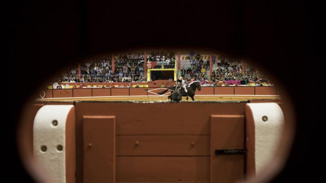 PAN avança com projeto de lei para abolir touradas em Portugal