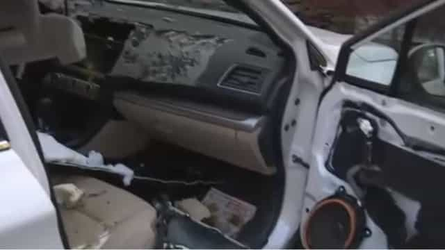 Urso deixa interior de carro de mulher completamente destruído