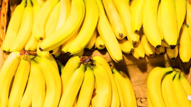 Continente continua a ser o principal consumidor de banana da Madeira