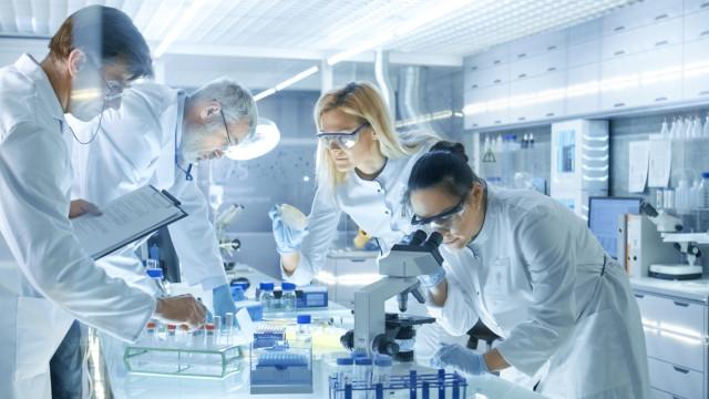 Investigadores do Porto criam testes para certificar produtos alimentares