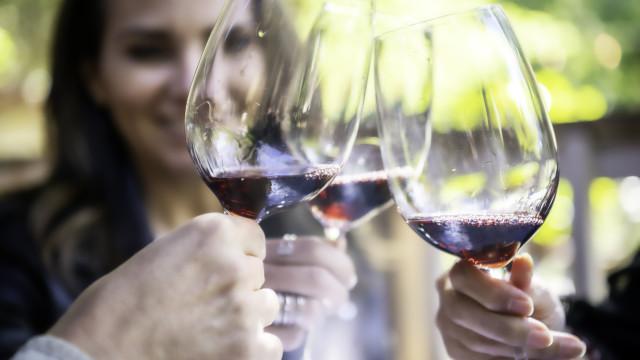 Este fim de semana, há provas de vinho à beira Tejo