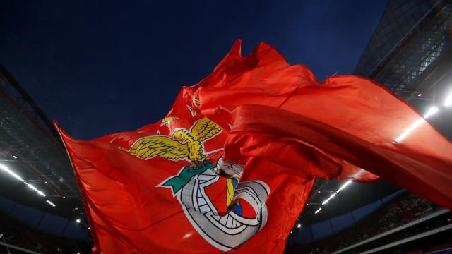 Benfica anuncia 'substituto(s)' de Paulo Gonçalves