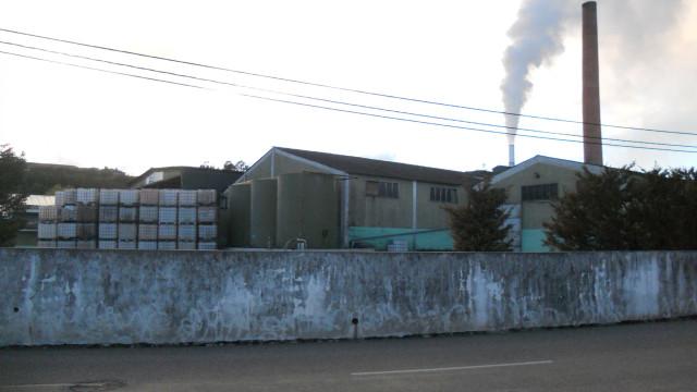 """Odores """"insuportáveis"""". Denunciada poluição em fábrica em Alcarraques"""