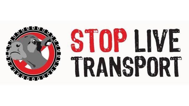 Ativistas marcham em Lisboa contra transporte de animais vivos