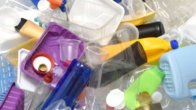 Dentes de lula dão novo material substituto do plástico