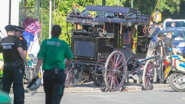 Quatro cavalos e uma carruagem entram por montra de loja no Reino Unido