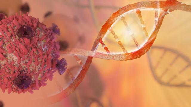 Ser o próprio corpo a destruir as células cancerígenas? É esta a proposta