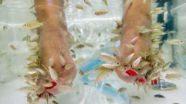 Mulher perde unhas depois de pedicure com peixes