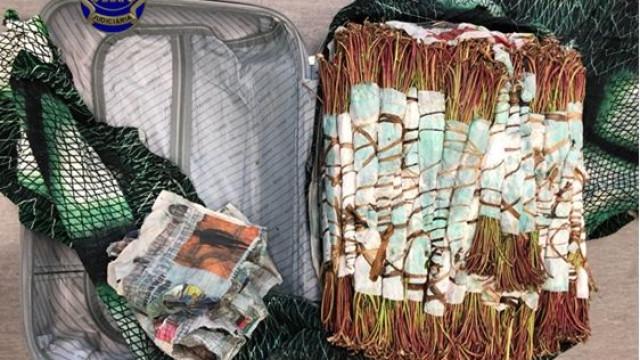 Dois estrangeiros detidos no aeroporto por tráfico de khat. Sabe o que é?