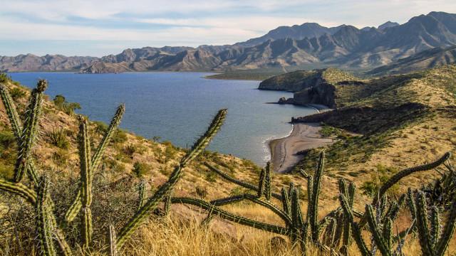 Os deslumbrantes desertos do México