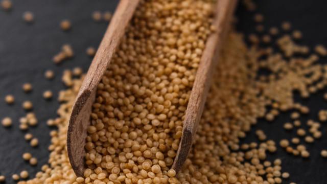 Nove razões para comer amaranto: O alimento versátil que emagrece