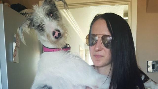 Depois de adotar cadela cega, vida de jovem com Asperger mudou