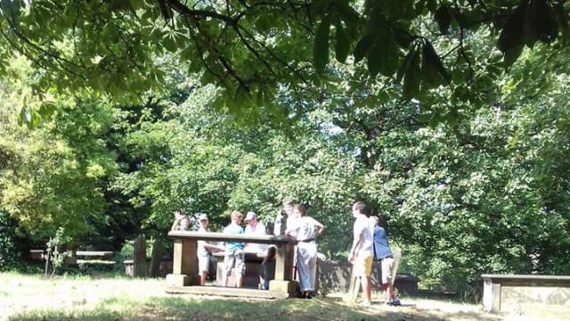 Família faz barbecue em cima de campa num cemitério do Reino Unido