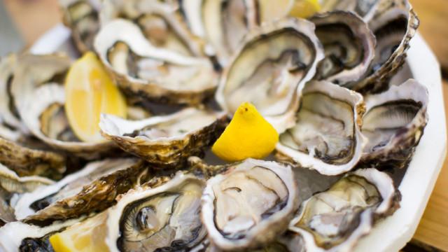Idoso morre após comer ostra infetada num restaurante da Flórida