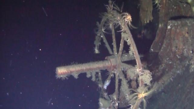 Navio de guerra afundado há 100 anos pode ter o maior tesouro de sempre