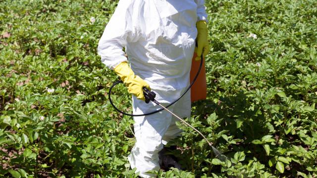 Pesticidas no Brasil estão a envenenar quem vive no campo