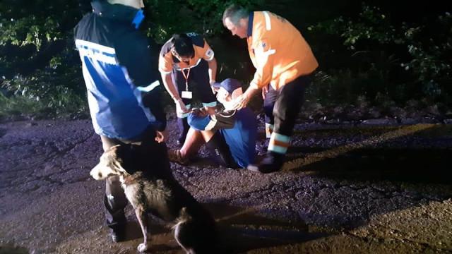 Cão de rua adotado depois de salvar ciclista ferido em acidente