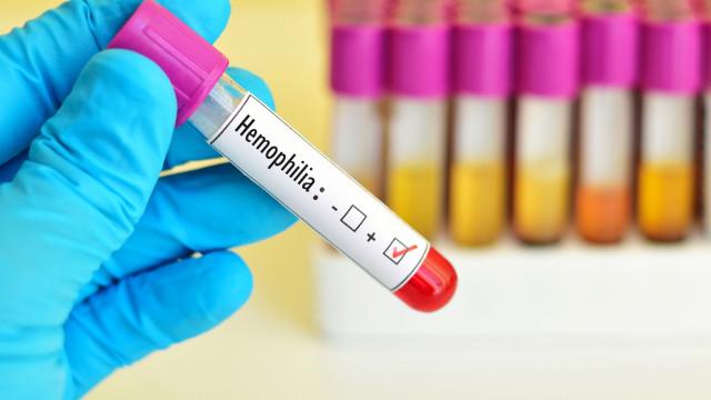 Hemofilia: Quando o tratamento permite 'de imediato' uma vida autónoma