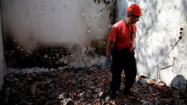 Centenas de animais de estimação também morreram nos incêndios da Grécia