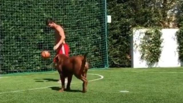 Nem o cão Hulk escapa às fintas de Messi