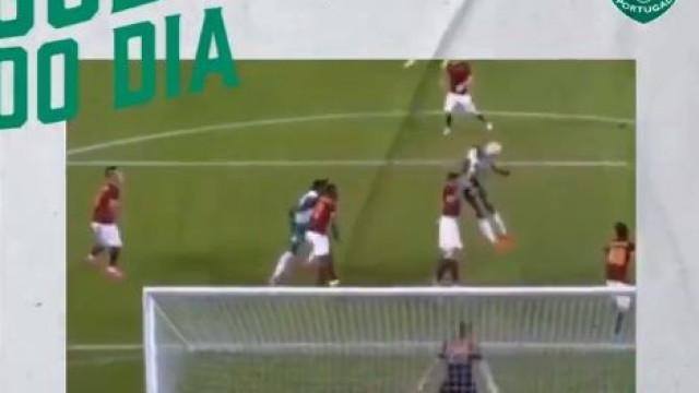 Sporting continua a 'chamar' por Islam Slimani