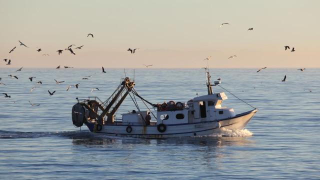 Pescadores angolanos desaparecidos há semanas foram resgatados no Gabão
