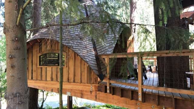 As grandes novidades da sede da Microsoft são… casas nas árvores
