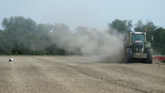 Bruxelas antecipa pagamentos aos agricultores devido à seca